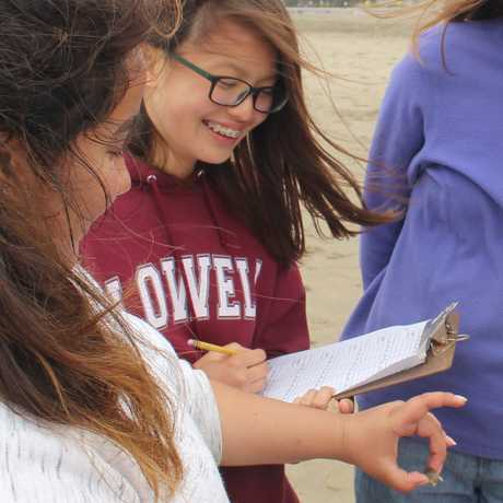 Ocean Beach LiMPETS data collection