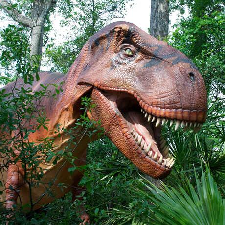 T. rex model in garden