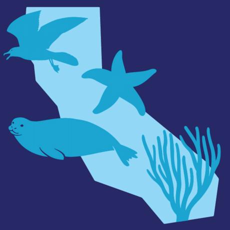 Snapshot Cal Coast logo