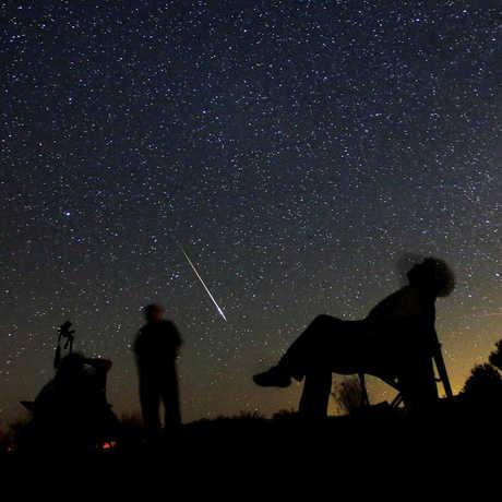 Stargazing under a night sky