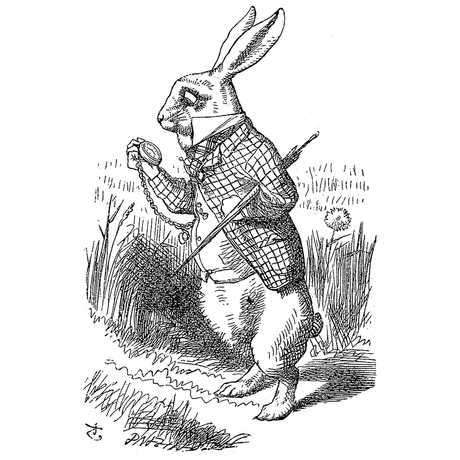 Illustration of White Rabbit from Alice in Wonderland