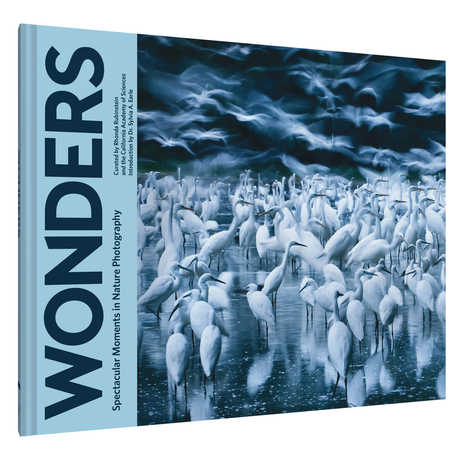 Wonders BigPicture photo book