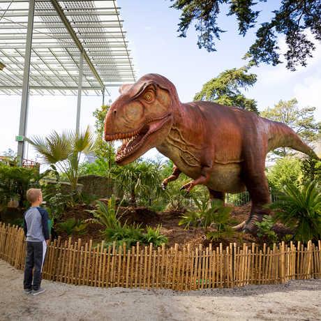 A boy faces down a life-size Tyrannosaurus rex at Dino Days