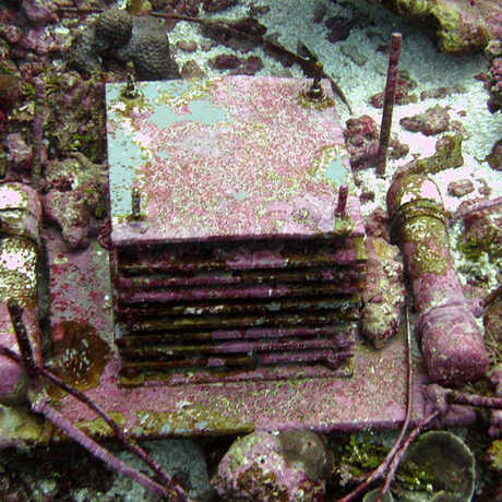 An ARMS module placed in a coral reef