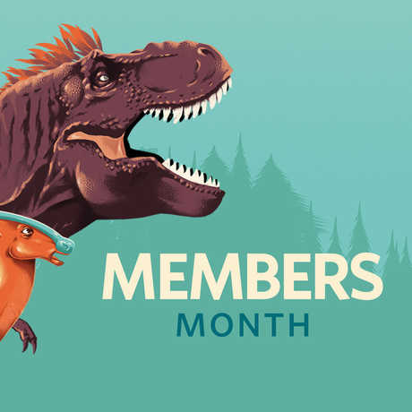 Colorful illustration of dinosaurs for Members Month
