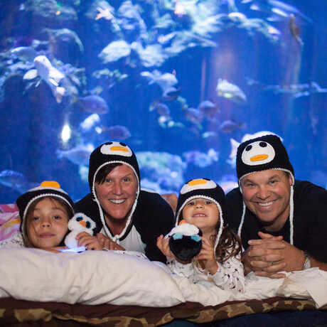 A family in penguin hats in their sleeping bags at an Academy sleepover