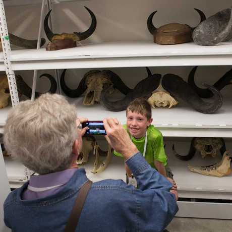 A boy poses with a wall-full of mammal skulls and antlers