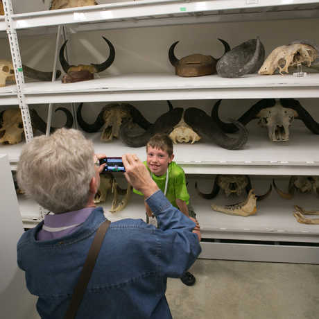 Guests explore scientific collections on a behind the scenes Academy tour