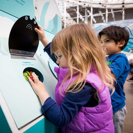 Kids explore hands-on activities in 'Tis the Season for Science exhibit