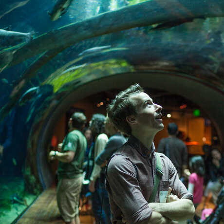 A guest gazes in wonder inside the Amazon Flooded Forest tunnel