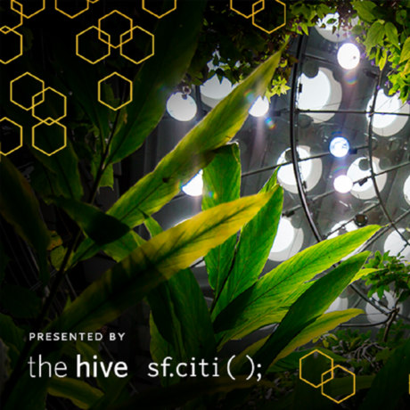 Hive August Event