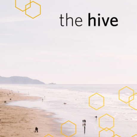 Hive Beach Cleanup