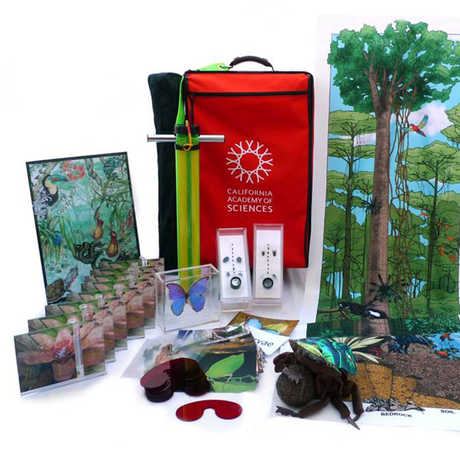 Kits contents in the Rainforests of The World kit for Grades K-3.