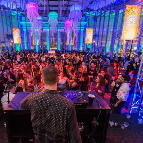 Party After Dark dance floor