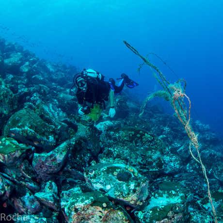 Cadu inspects abandoned fishing gear in Principe