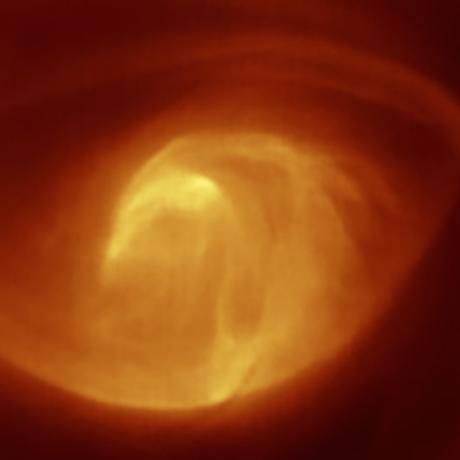 Venus Vortex