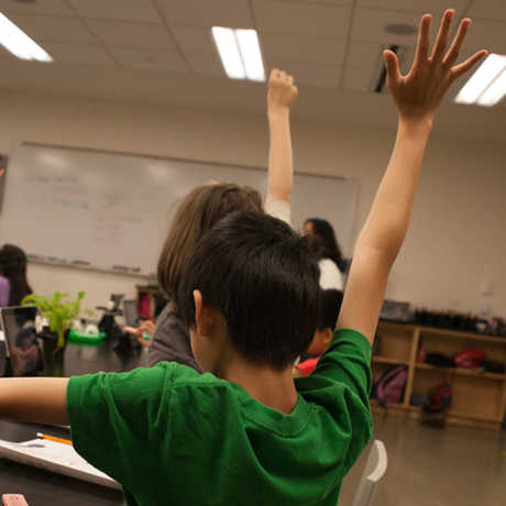 a student raises their hand in a classroom