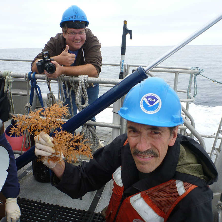 Gary Williams displays black coral collected in the Farallones.