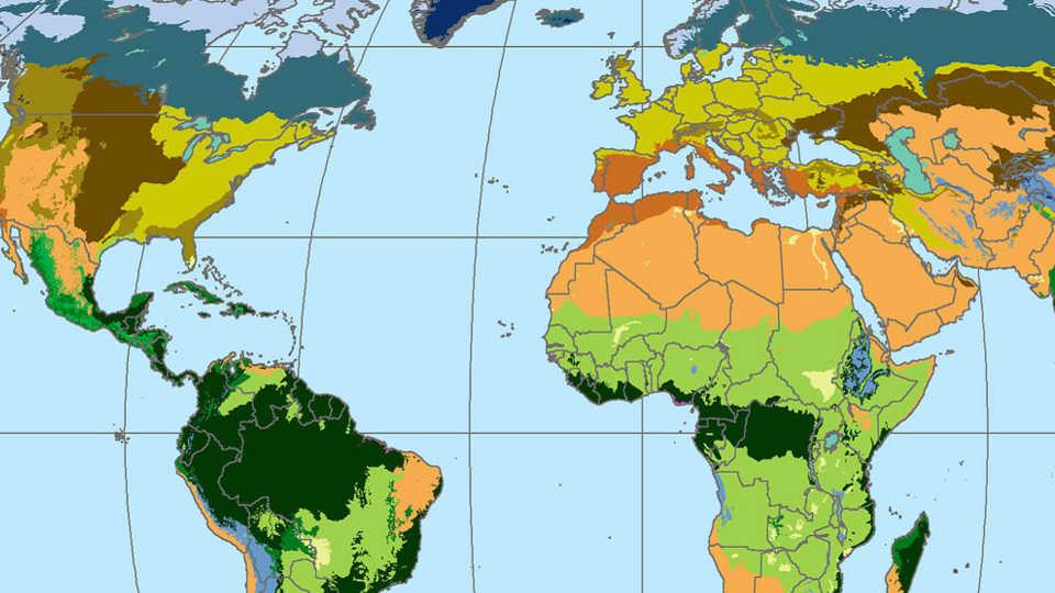 Map of world biomes