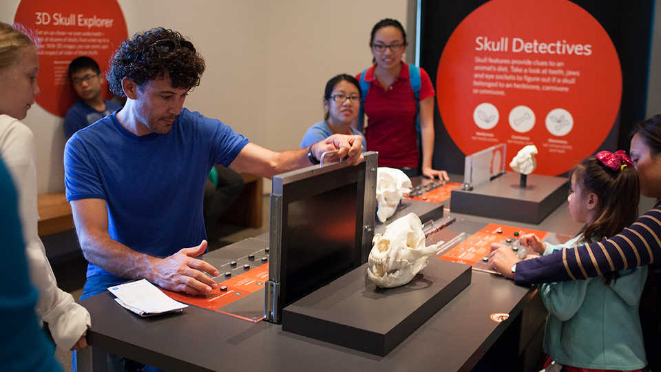 Hands-on Interactives