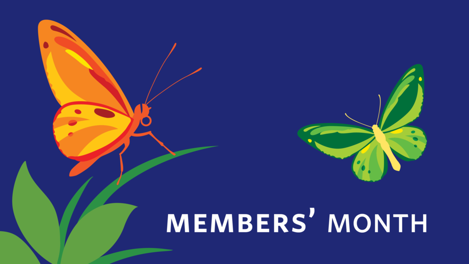 October is Members Month at the Academy