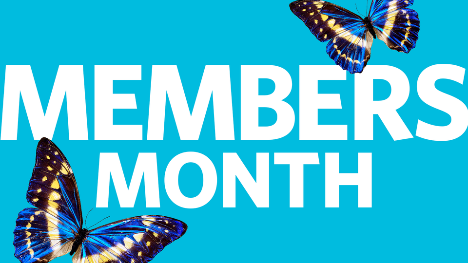 Members Month image with blue butterflies