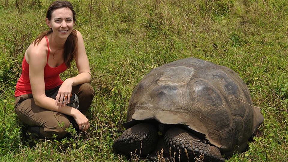 Scientist Elizabeth Hennessy poses with a giant Galápagos tortoise