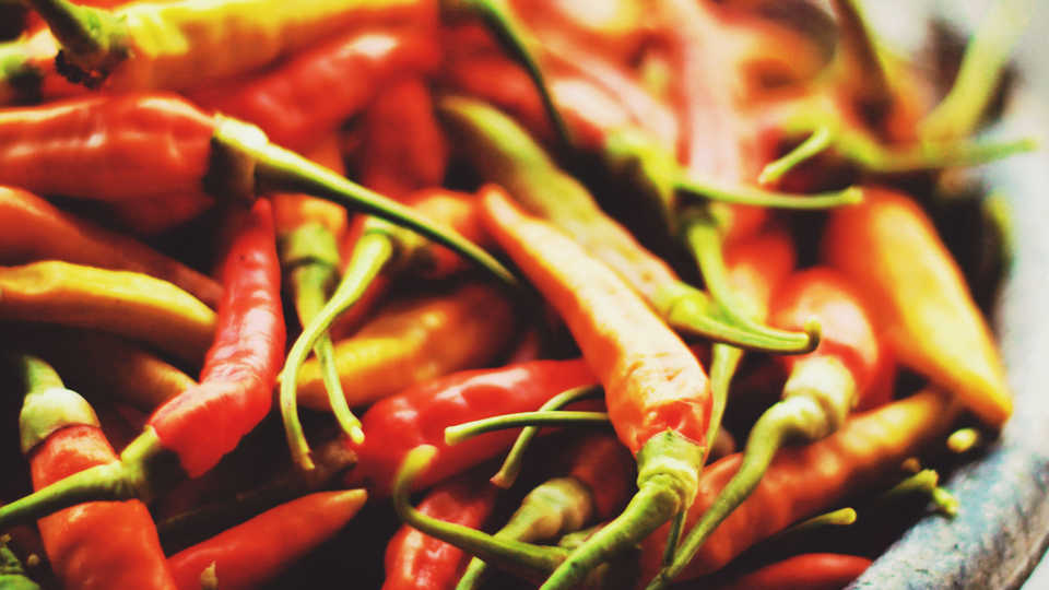 Bowl of chili peppers