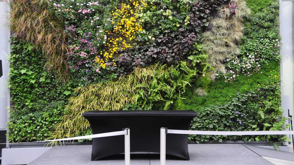 Living wall Piazza stage