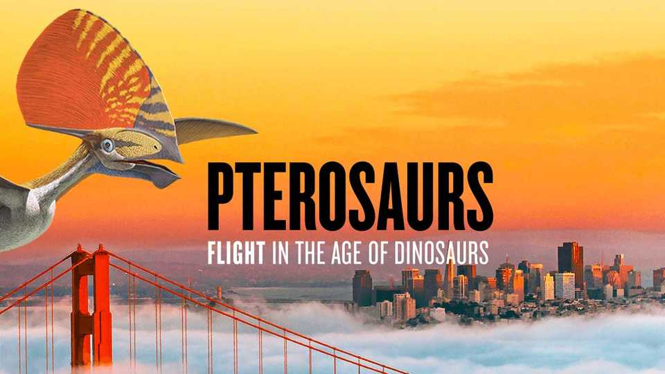 A pterosaur swoops over San Francisco Golden Gate Bridge