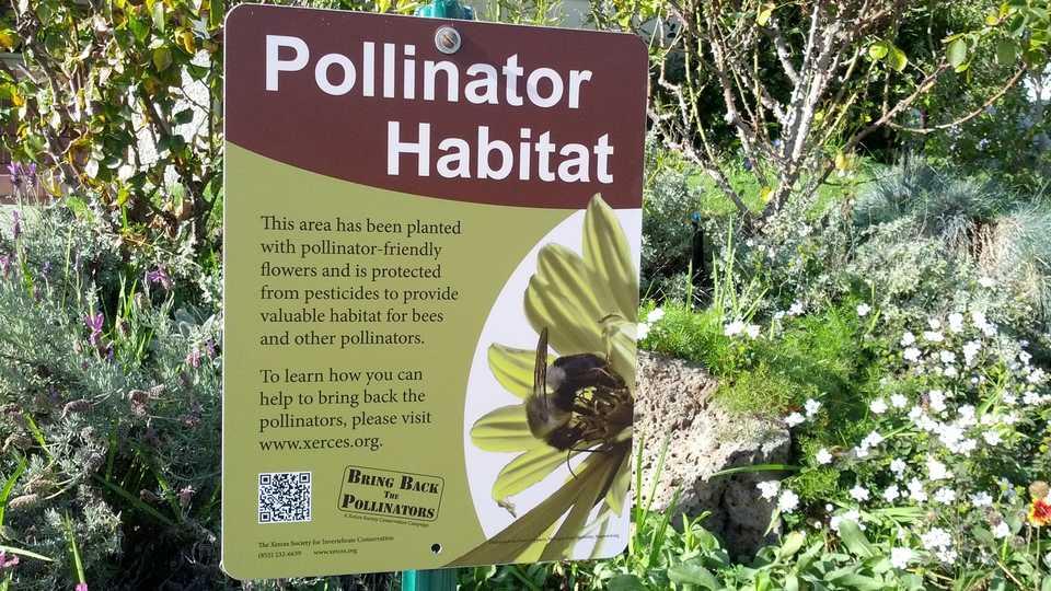 Pollinator Habitat Sign