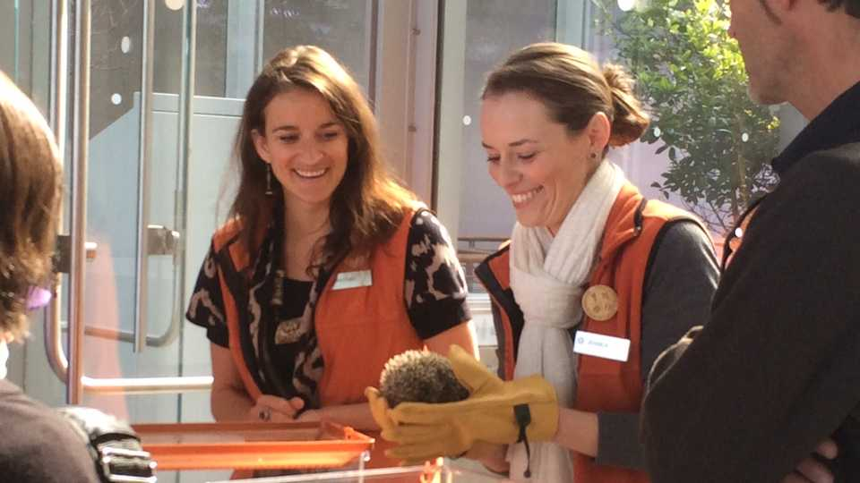 Presenters showing a live animal to guests
