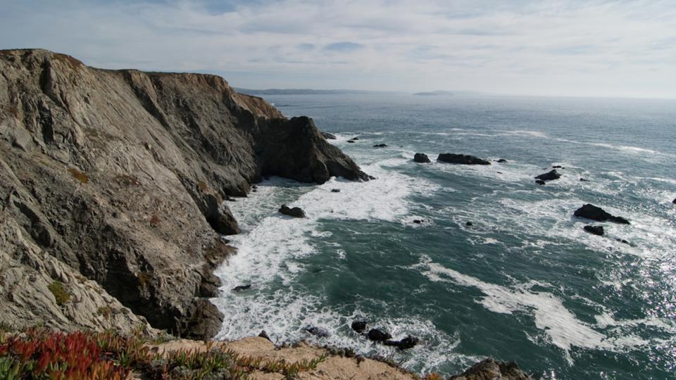 The coast near Bodega Bay