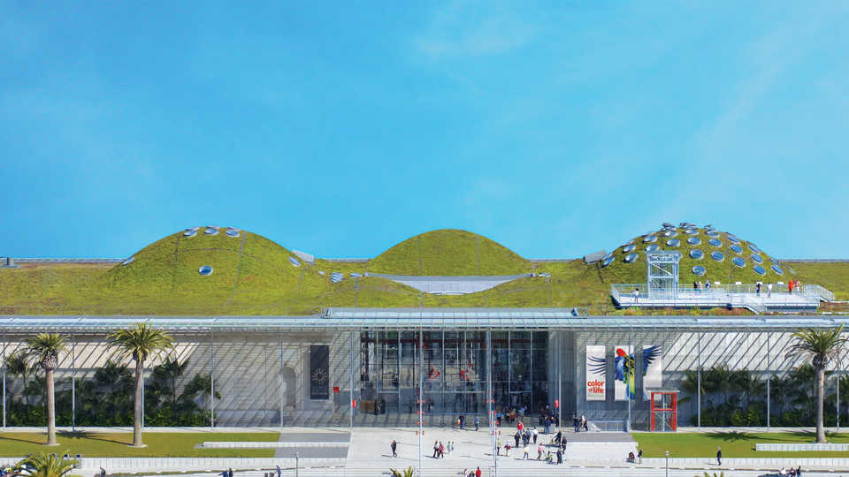 The Academy entrance and Living Roof from above