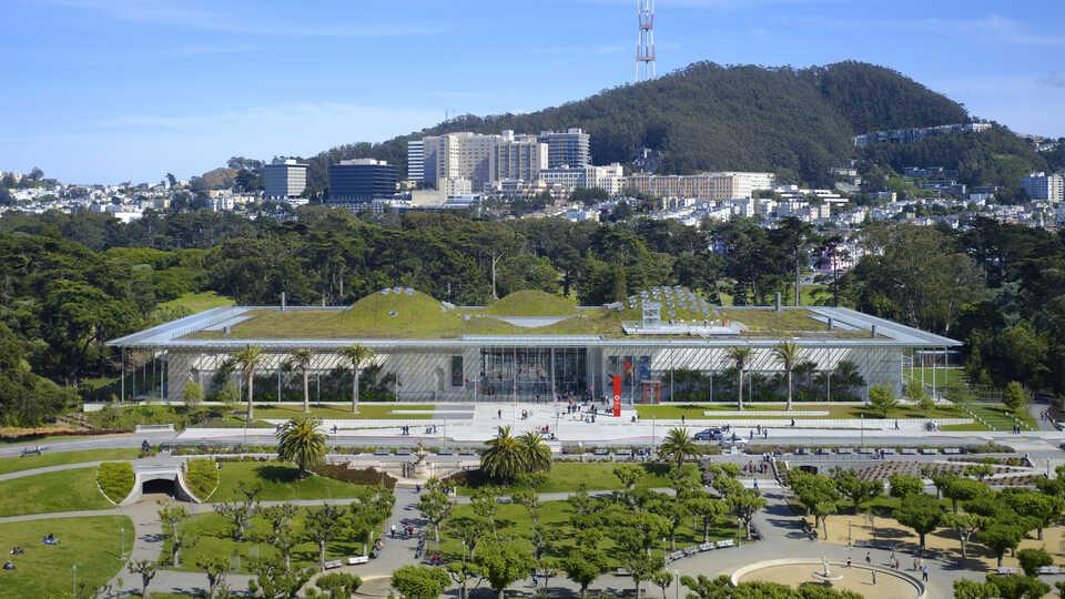 Academy building in Golden Gate Park