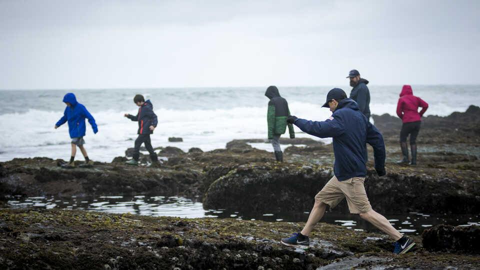 Man jumps between tidepool boulders at Pillar Point during a bioblitz