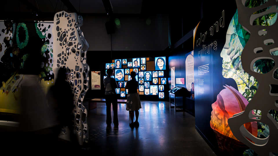 Guests check out the digital portrait wall in the Skin exhibit