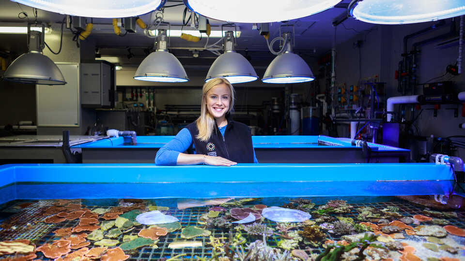 Dr. Rebecca Albright in her coral lab at the Academy