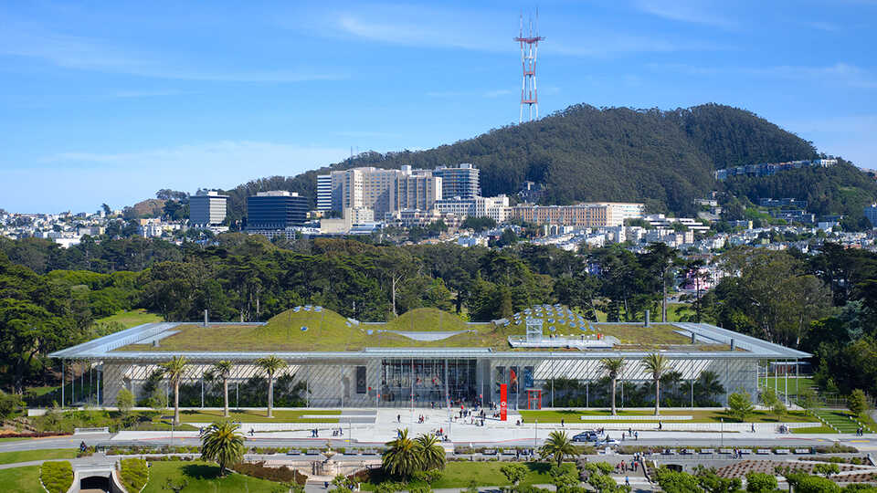 The California Academy of Sciences